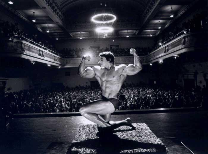 Ar 23 Frases de Arnold Schwarzenegger