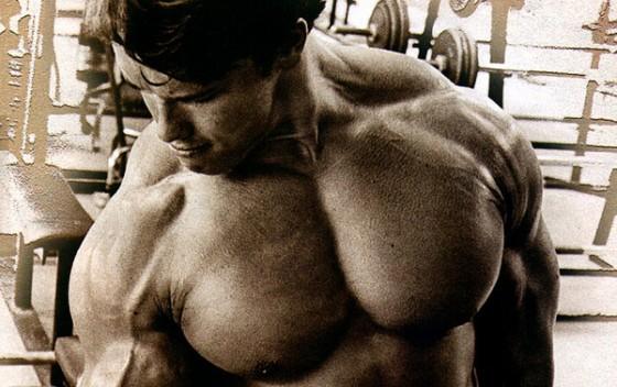 arnold masa muscular alimentos 560x352 Los Mejores 8 Alimentos Para Aumentar La Masa Muscular