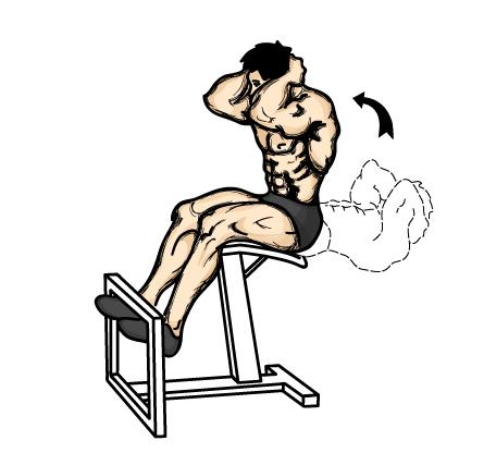 exercices 2 Arnold Schwarzenegger – Entrenamiento Para Abdominales De Acero