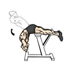 exercices 4 Arnold Schwarzenegger – Entrenamiento Para Abdominales De Acero