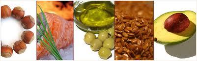 n 5 Conceptos Básicos De La Nutrición