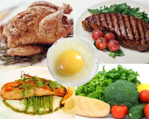 n 6 Conceptos Básicos De La Nutrición