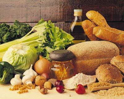 n 7 Conceptos Básicos De La Nutrición